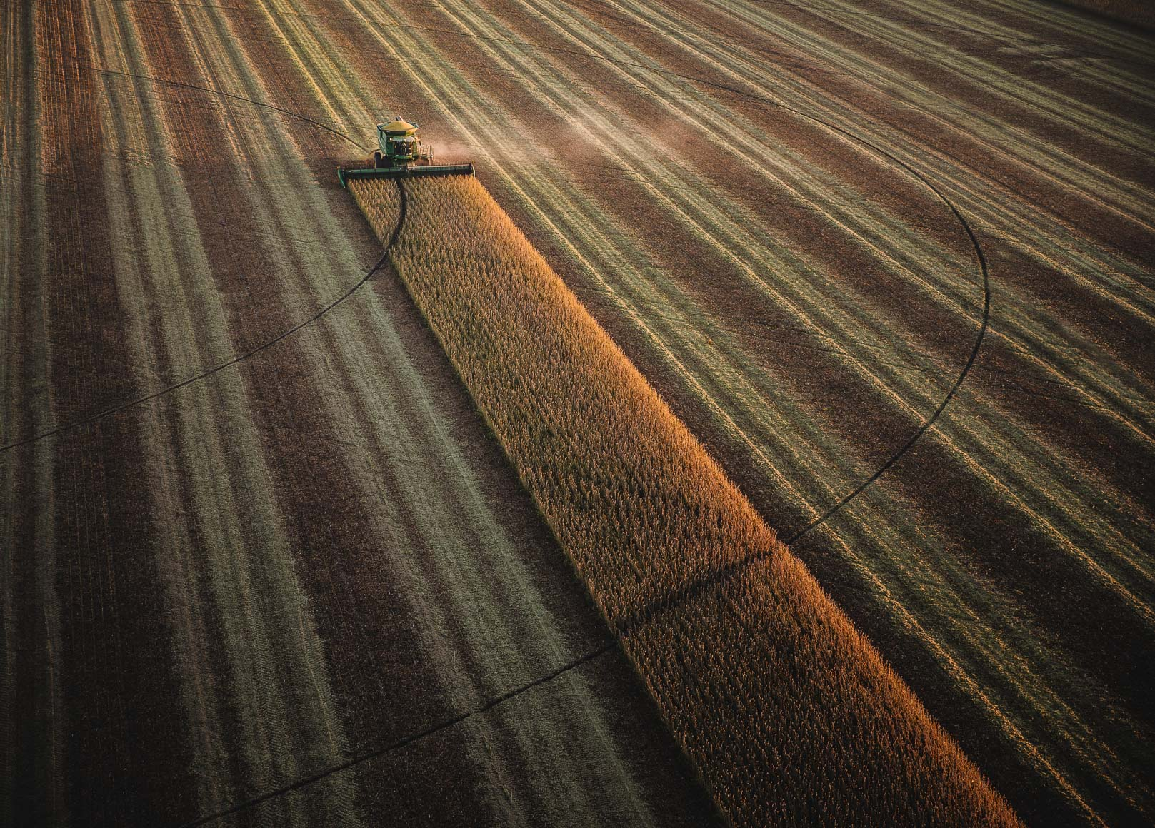 Michael Kunde Photo | Nutrien Ag Solutions | Overview | Agriculture